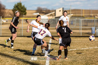 Picture from the DeForest Girls Soccer Spring 2015 season