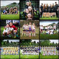 DeForest 2016 Spring Sports Soccer and Baseball Team Photos