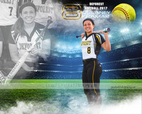 DeForest 2017 Spring Softball